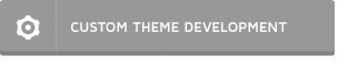 CUSTOM THEME DEVELOPMENT