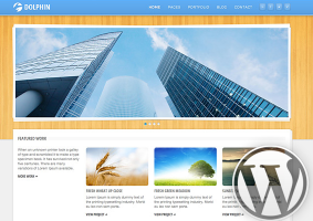 Dolphin WordPress Theme